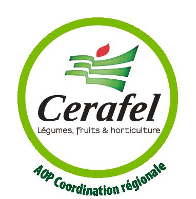 Logo Cerafel Légumes, fruits & horticulture