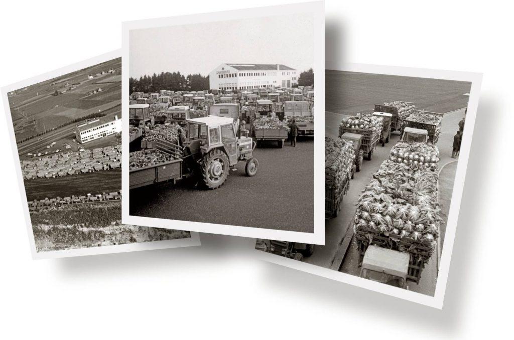 3 photographies de l'époque. Les agriculteurs de la Sica