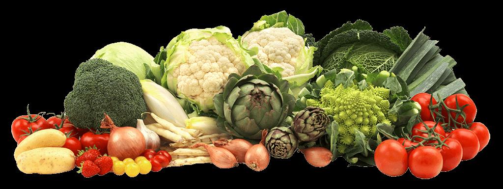 fruits et légumes produits par la coopérative de légumes Sica