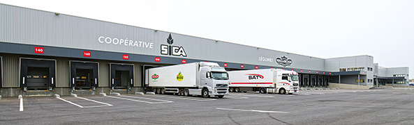 vue des camions Sica Vilar Gren pour l'export des légumes